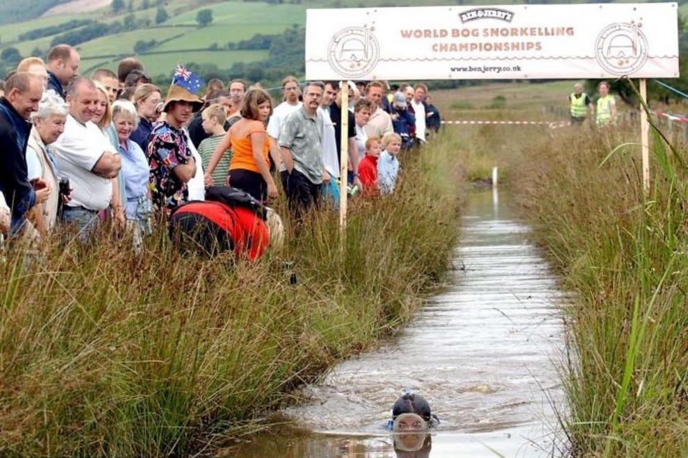 Crowds cheer on a bog snorkeler