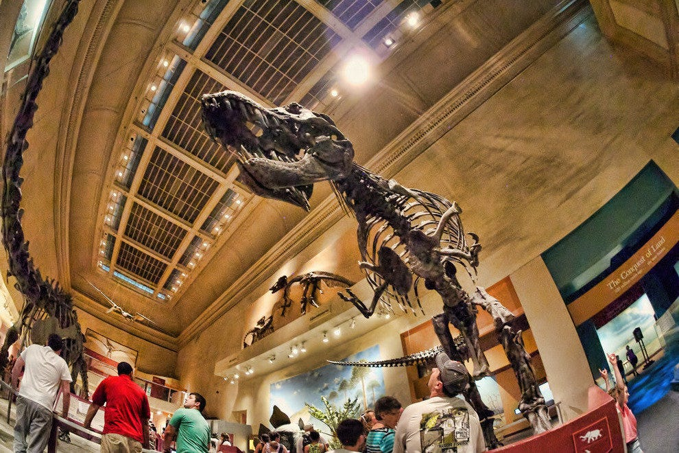 Smithsonian Museum of Natural History in Washington, DC