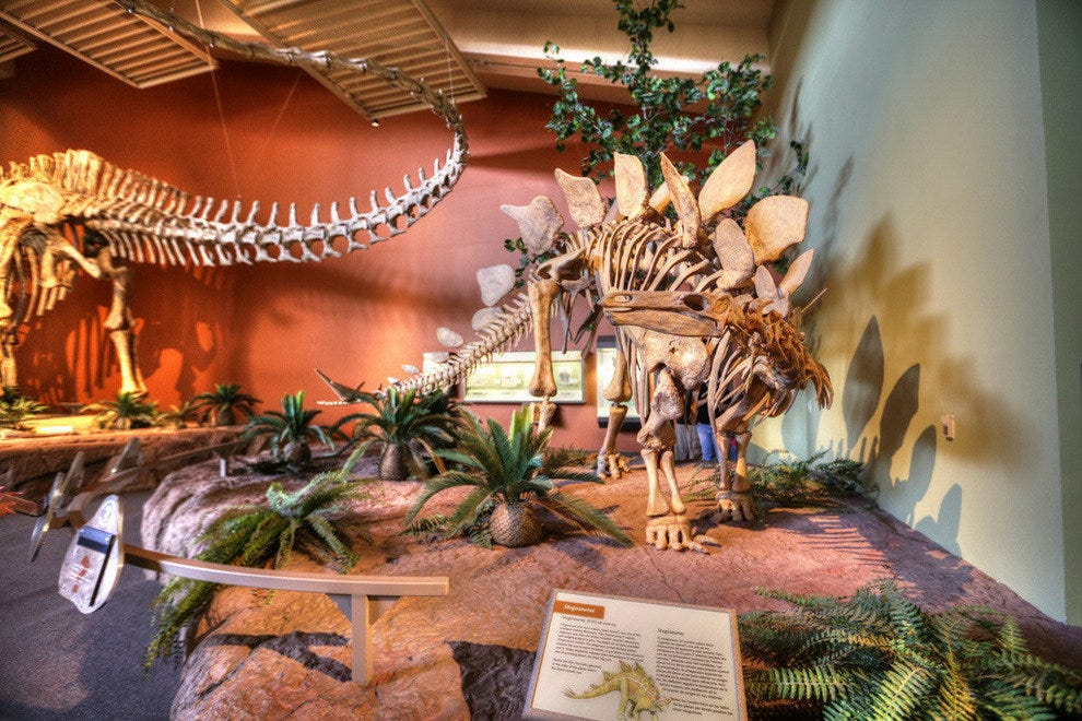 New Mexico Museum of Natural History & Science in Albuquerque, NM