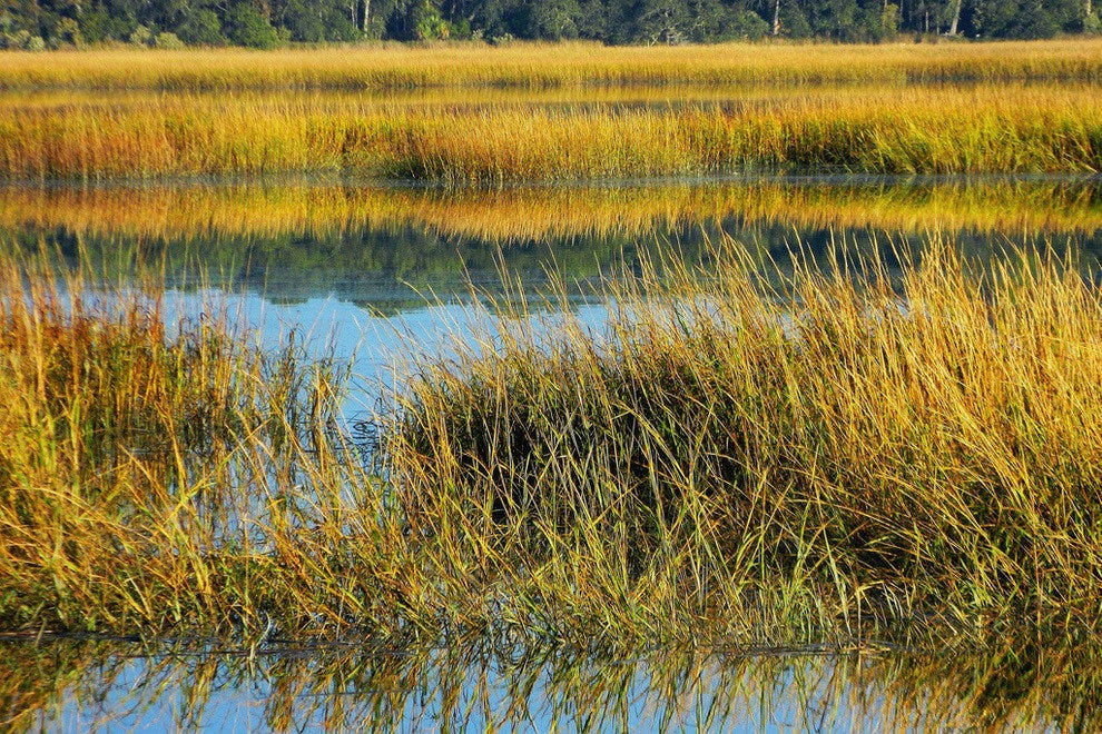 Salt Marsh near Hilton Head