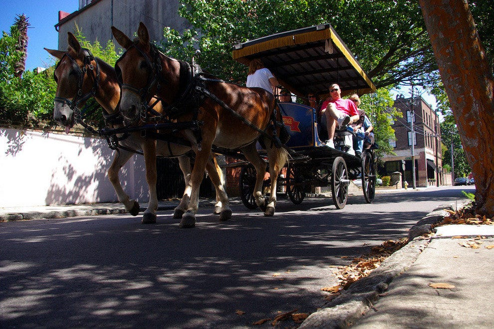 Horse-drawn carriage tour through Old Charleston