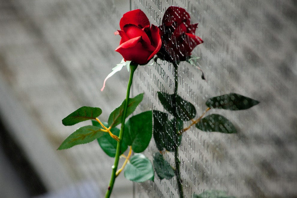 A rose left at the Vietnam Veterans Memorial
