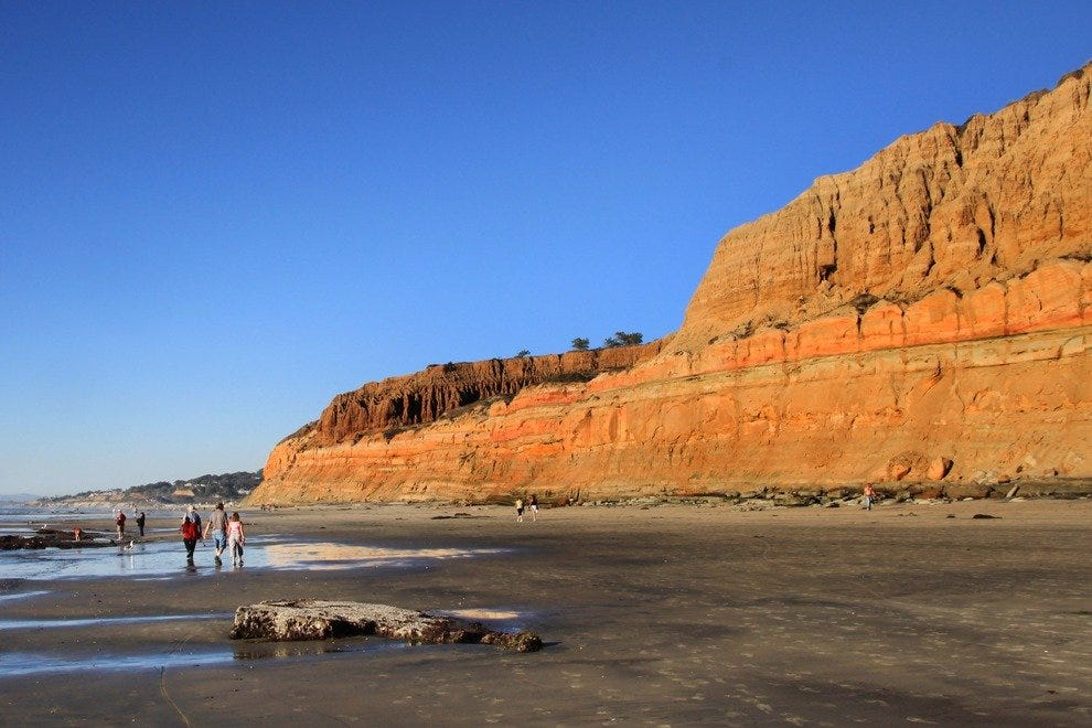 Golden Cliffs at Torrey Pines State Reserve