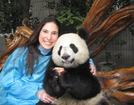 10 Places to See Giant Pandas