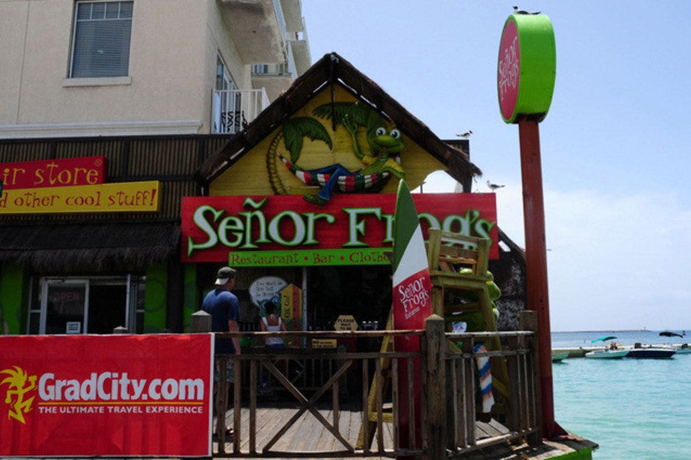 Senor Frogs