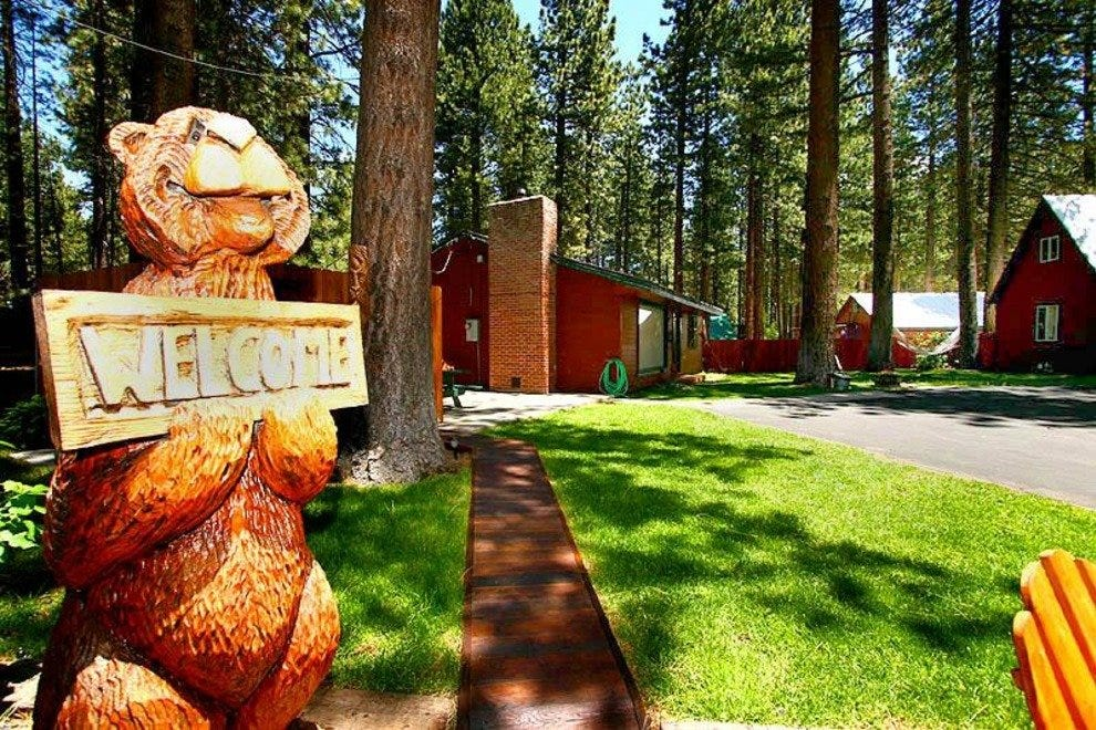 Dogs (and bears) are welcome at Spruce Grove Cabins