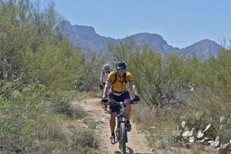 10 Best Parks in Tucson: Exploring the City's Wide Open Spaces