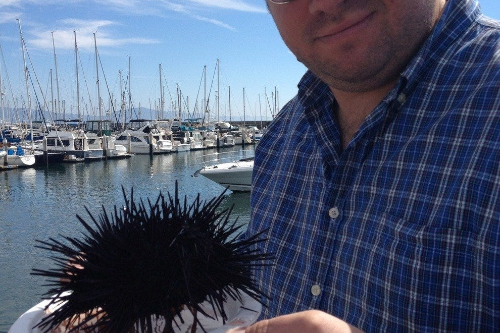 The author's husband enjoys fresh sea urchin every year