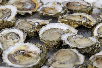 Barnacle Bill's in Myrtle Beach: Fresh Seafood, Cold Drinks, Live Music