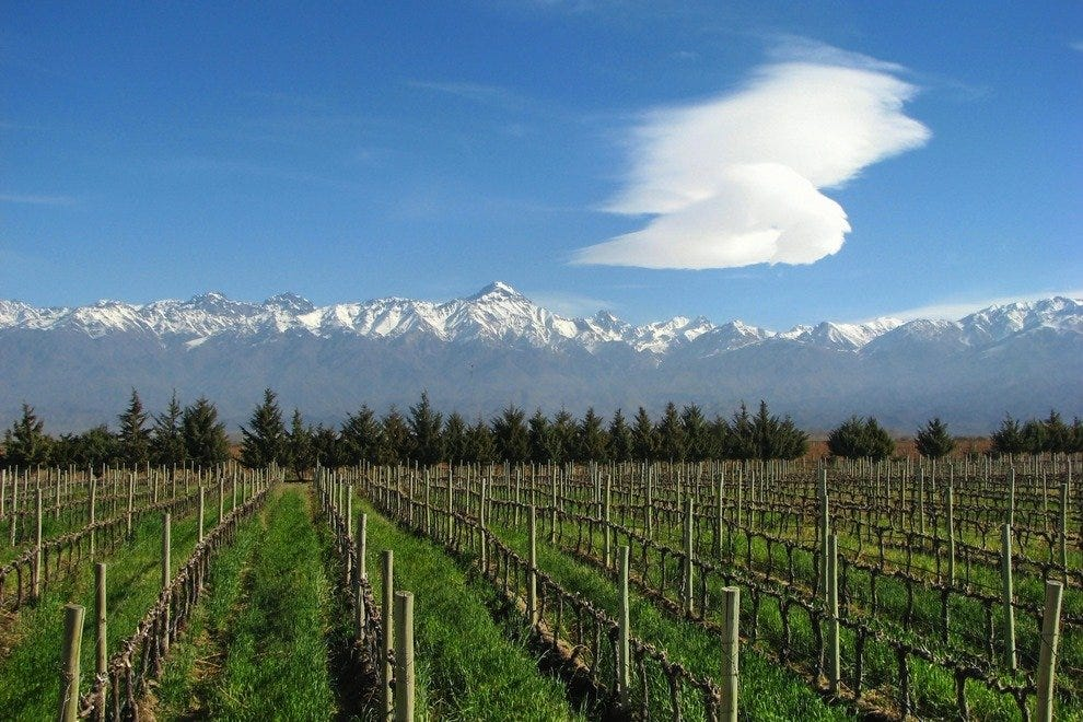 The picturesque vineyards of Mendoza enjoy the snowy Andes as their backdrop.