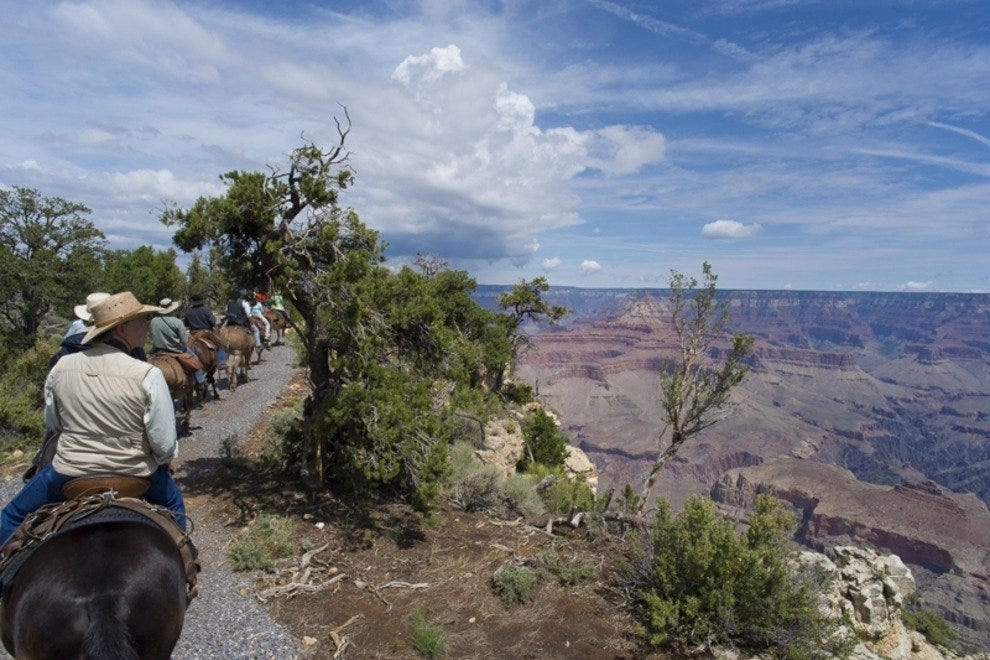 Soaring views seldom seen of the Grand Canyon fill the Canyon Vistas Mule Ride