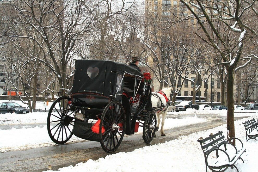 Cozy Carriage Rides