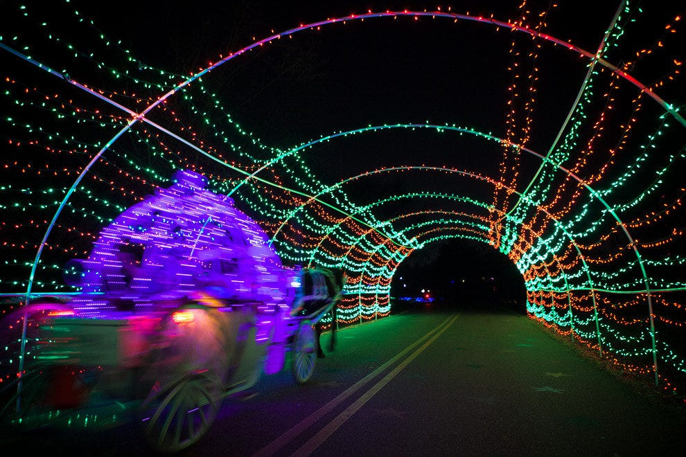A lighted carriage makes its way through Starry Nights.