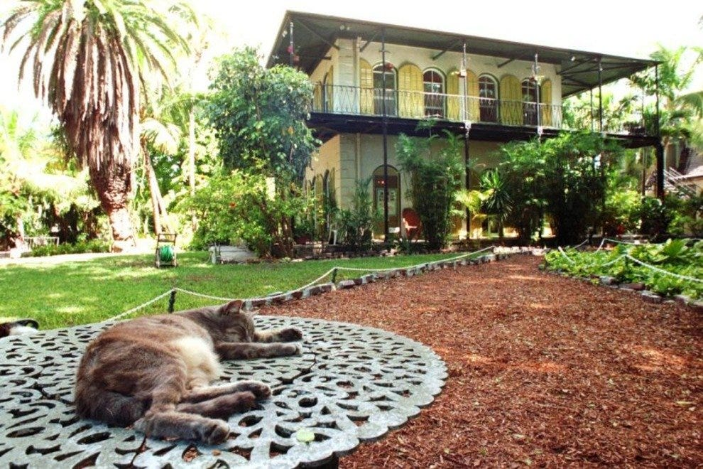 A six-toed cat relaxes outside the Hemingway Home