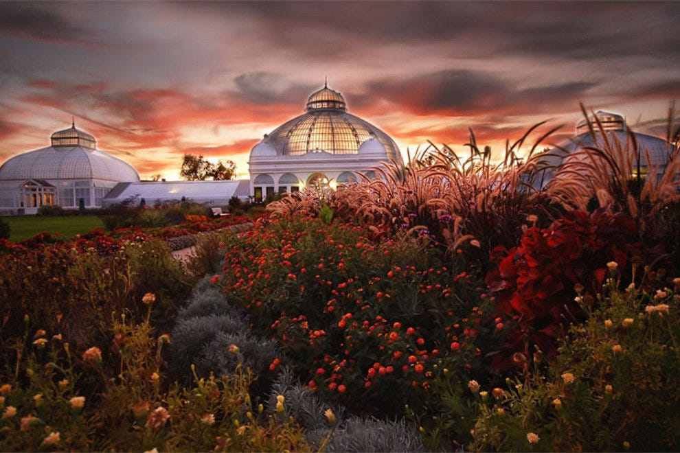 The Beautiful Buffalo And Erie County Botanical Gardens U2014 Photo Courtesy Of  Buffalo And Erie County Botanical Gardens