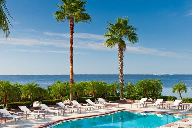Travel Med Usa Tampa Fl