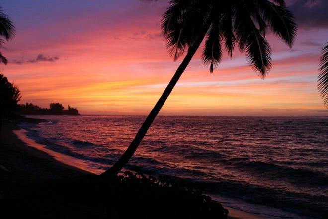 Beach Bars in Honolulu