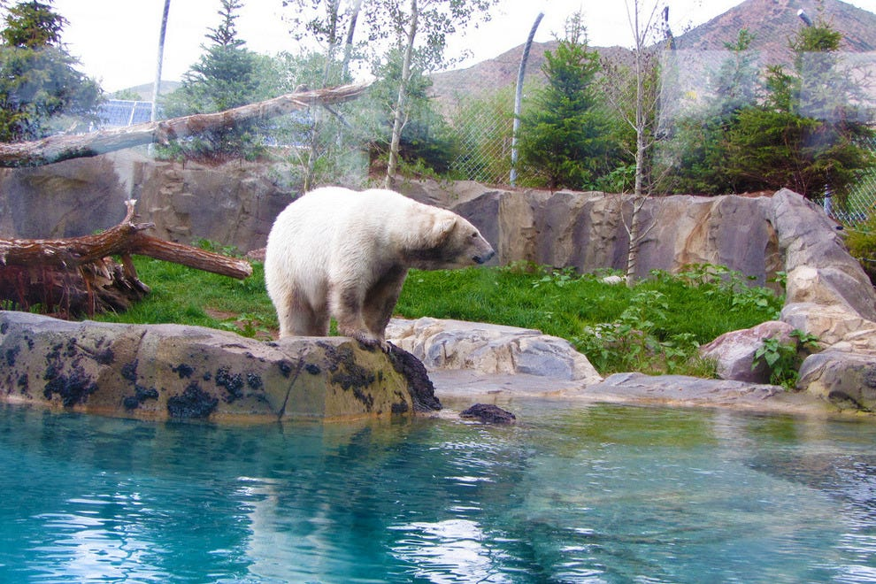 Hotels Near Hogle Zoo