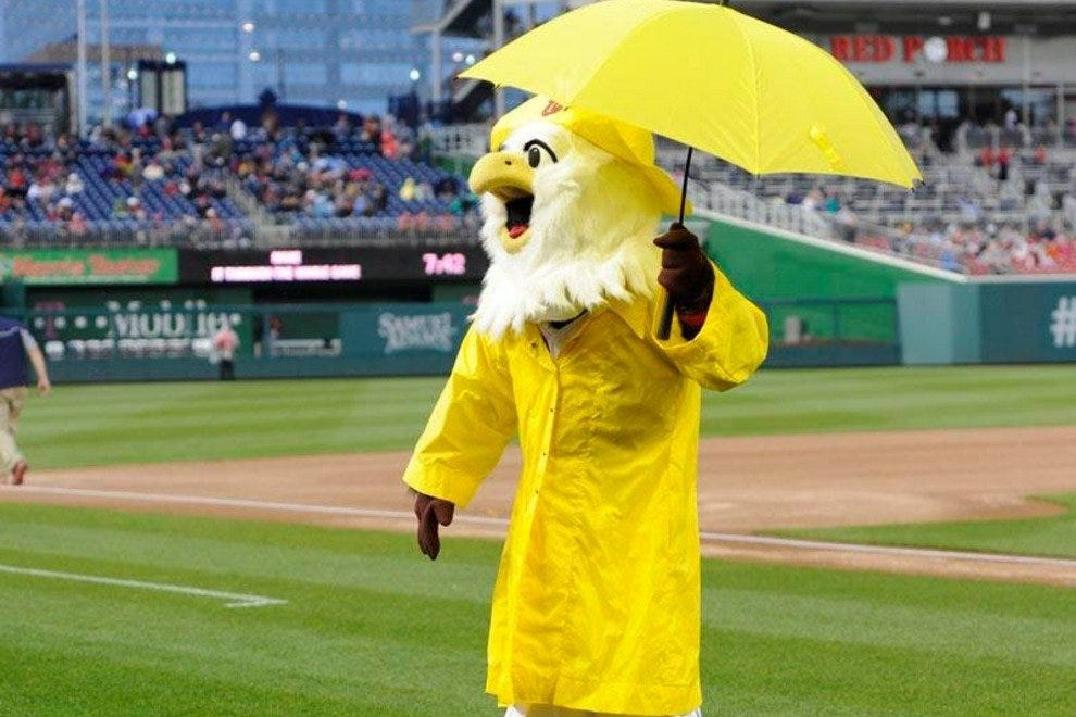 It takes more than a little rain to dampen Screech's spirit.
