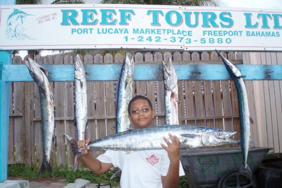 Reef Tours (Fishing & Boat Tours)