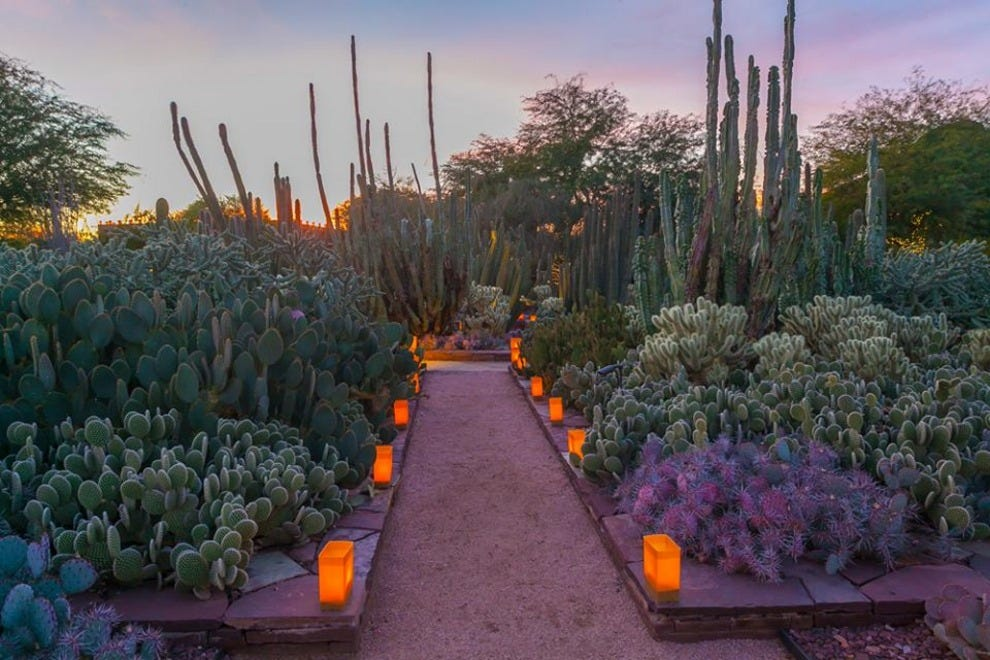 Desert Botanical Garden Scottsdale Attractions Review 10best Experts And Tourist Reviews