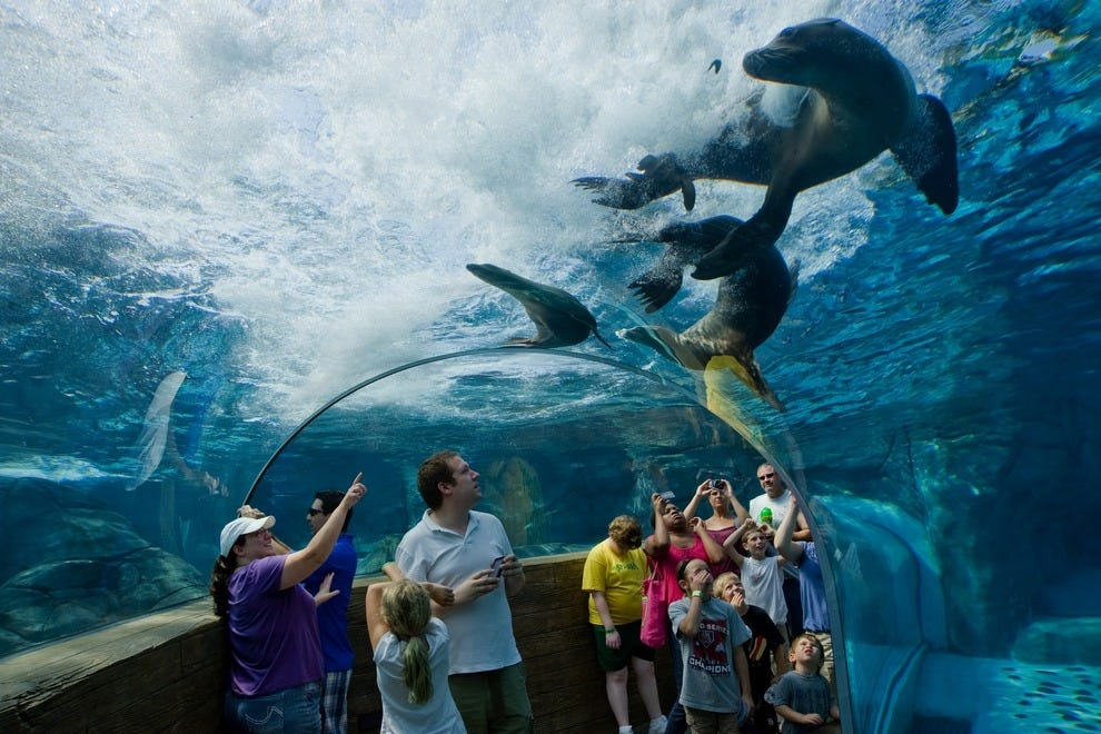 Best Us Zoos 10best Readers 39 Choice Travel Awards