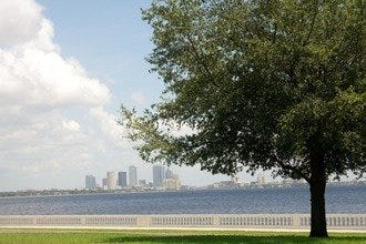 Half-Day Bike Tour of Tampa: Slow Down, Enjoy the Views