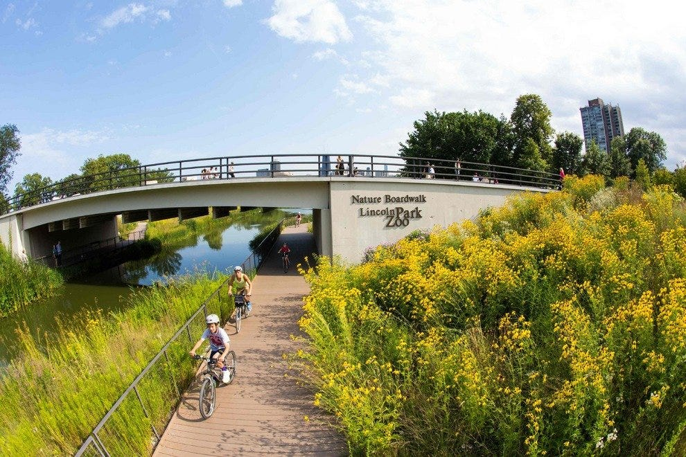 Biking around Chicago destinations like Lincoln Park Zoo is easy, convenient and fun
