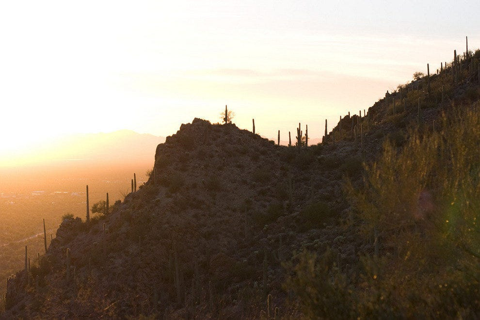 The McCain bike loop takes you through Tucson's majestic Gates Pass