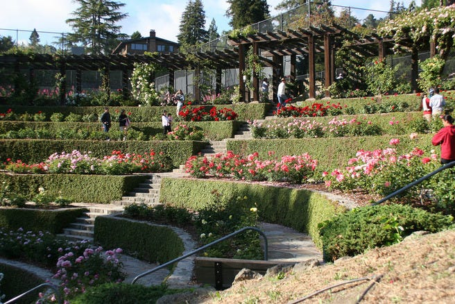 10best beautiful rose gardens features photo gallery by Berkeley rose garden