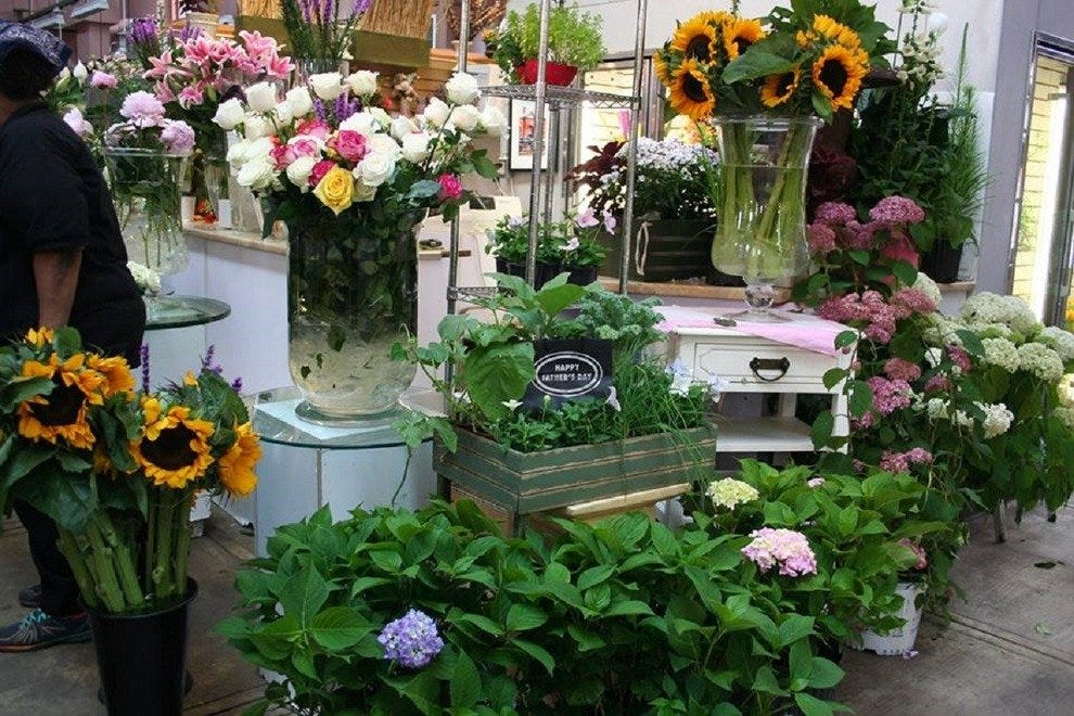 Looking for fresh flowers? Look no further!