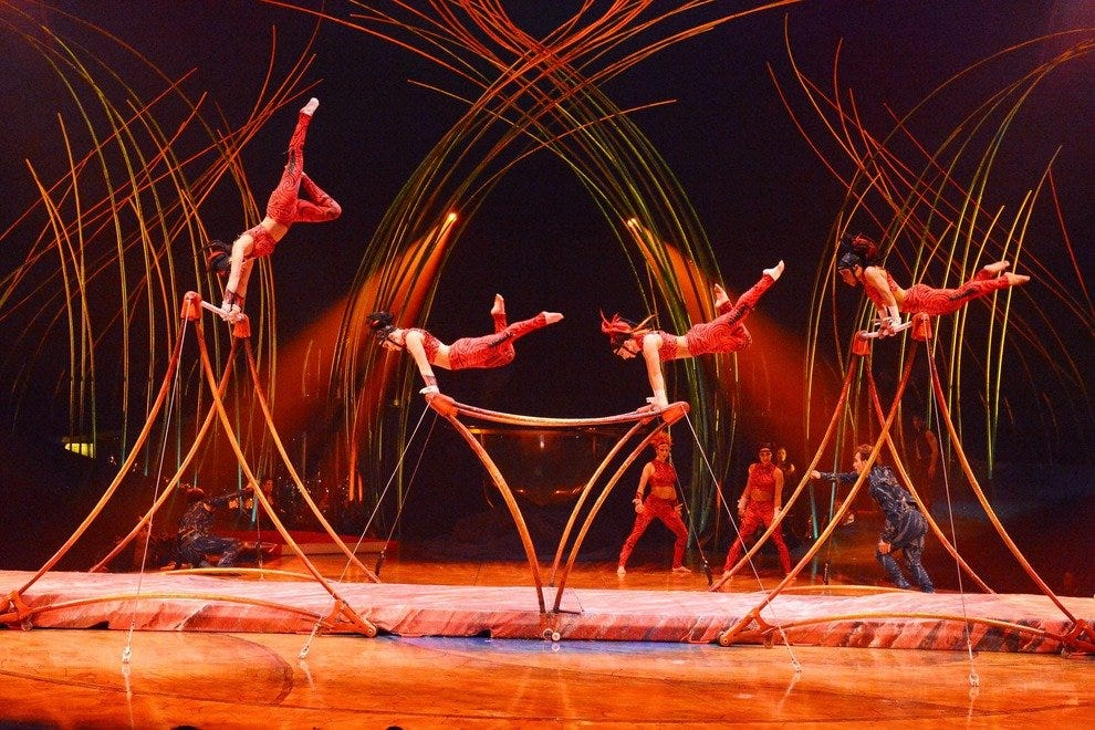 The shows by Cirque du Soleil tend to be both visually stunning and acrobatic
