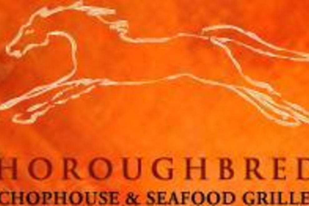 Thoroughbred's