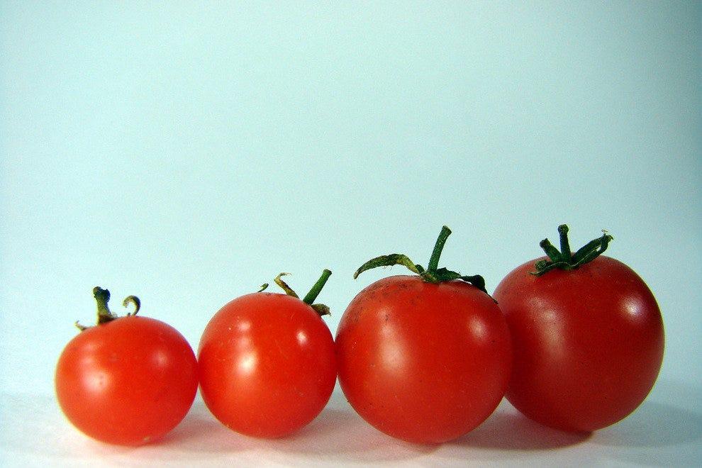 Sweet Tomatoes Menu West Palm Beach