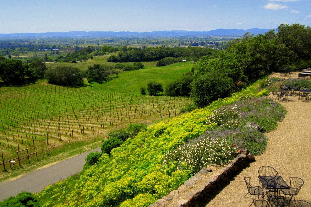 A valley view surveys spring's progress from Paradise Ridge Winery.