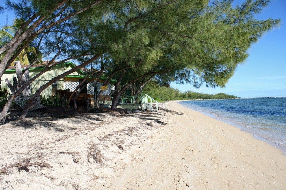 珊瑚港海滩