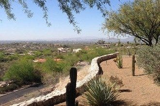 Tucson's Westin La Paloma Resort Shines Light on Desert Life