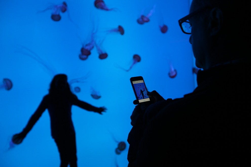If your kids are afraid of the dark, jellyfish work as the ultimate nightlights