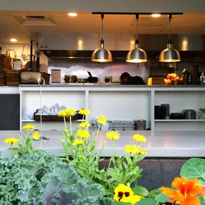 The Kitchen Lodo Denver Restaurant Night