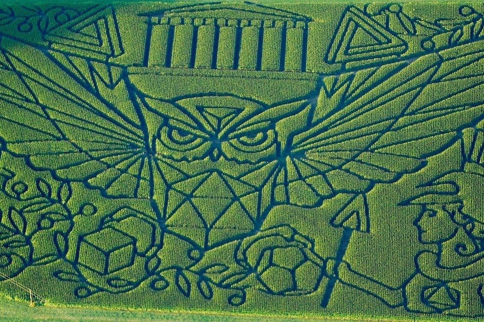 10best fall corn mazes fun for families trip planning photo