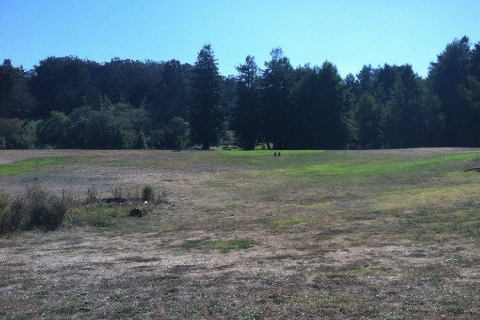 Big, open spaces of McLaren Park