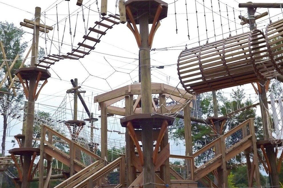 Wild Blue Ropes challenges visitors to 70+ ropes features at 35 feet above ground!