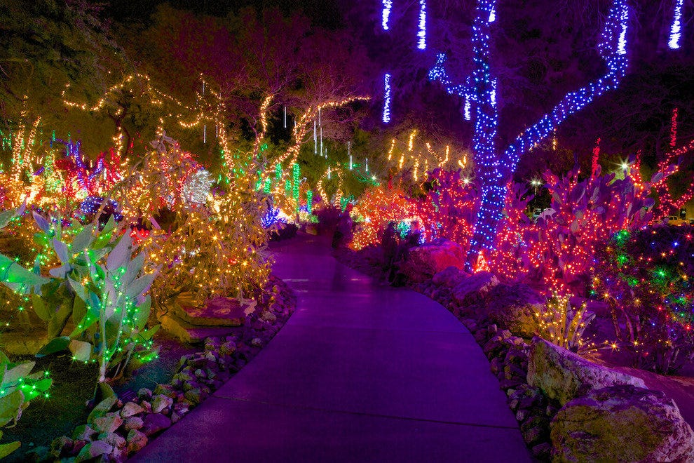 Ethel M Chocolates Holiday Cactus Garden: Las Vegas Attractions ...