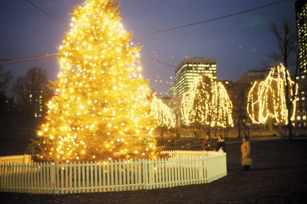 Boston common christmas tree lighting boston attractions review boston common christmas tree lighting sciox Images