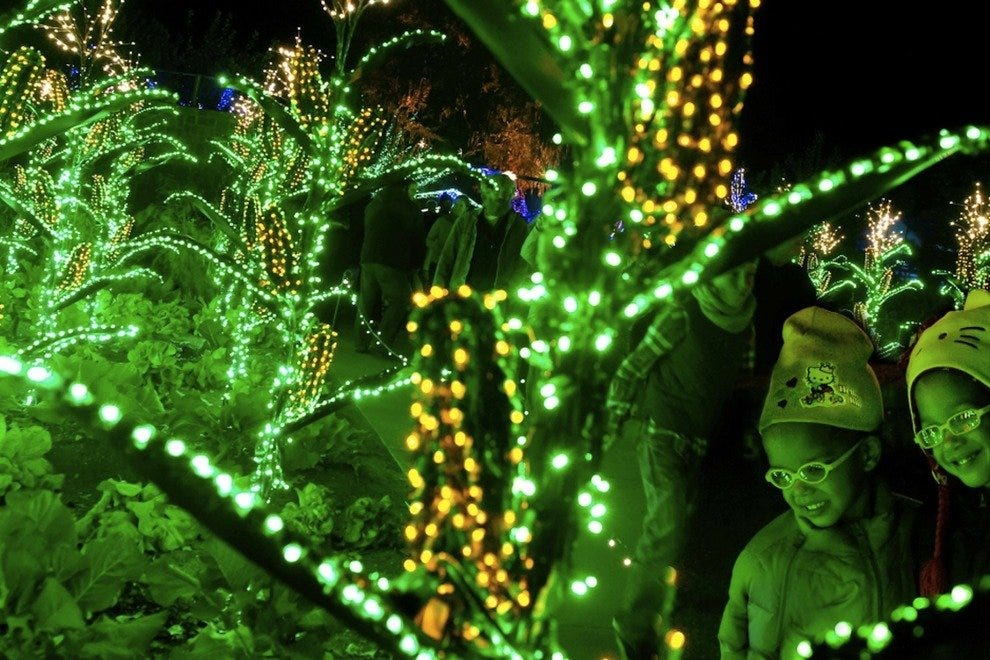 Garden Lights Holiday Nights at Atlanta Botanical Garden: Atlanta ...