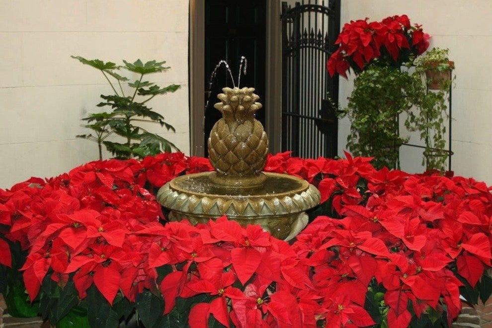 Poinsettias adorn the charming setting of the Kings Courtyard Inn