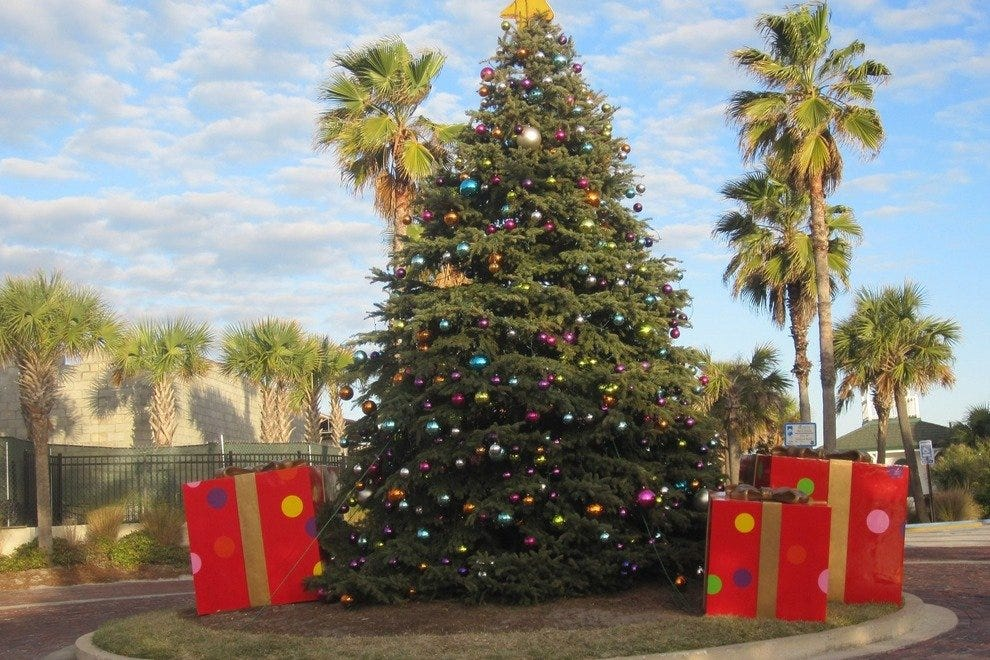 Palm trees and Christmas trees co-habitate at the Beaches Town Center