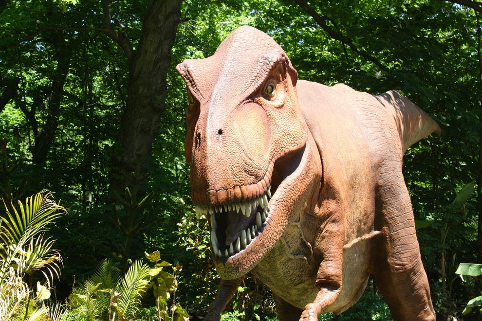 10best Attractions For Kids At The Bronx Zoo