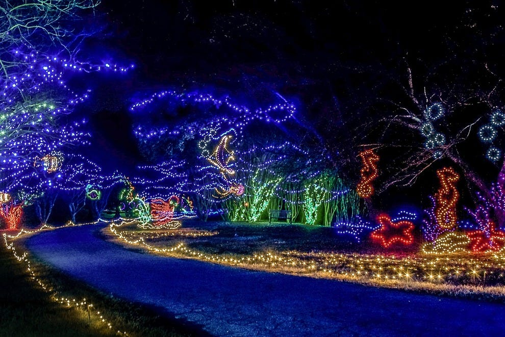 Best Public Lights Display Winners 2014 10best Readers