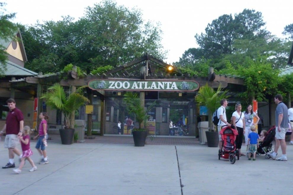 Discounts average $13 off with a Zoo Atlanta promo code or coupon. 23 Zoo Atlanta coupons now on RetailMeNot.
